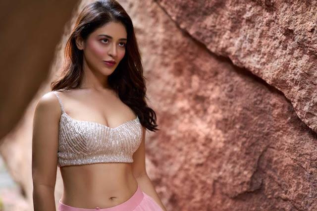 Tollywood Seducing Actress Priyanka Jawalakar Latest Hot Photoshoot Pictures