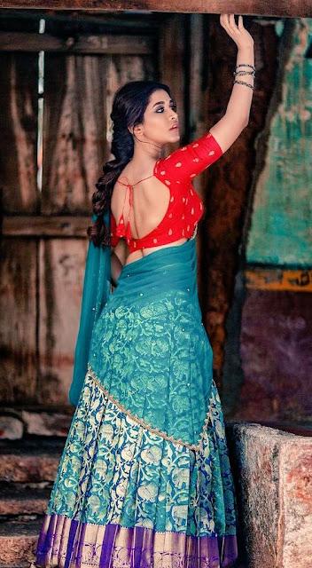 Sexy Saree Stills of Tollywood Actress Nabha Natesh