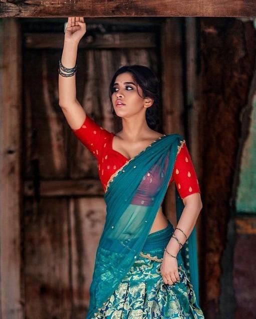 Actress Nabha Natesh Seductive Hot Half Saree Photoshoot