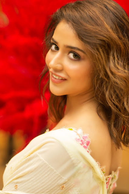 Telugu Actress Priyanka Jawalkar Photo Collections