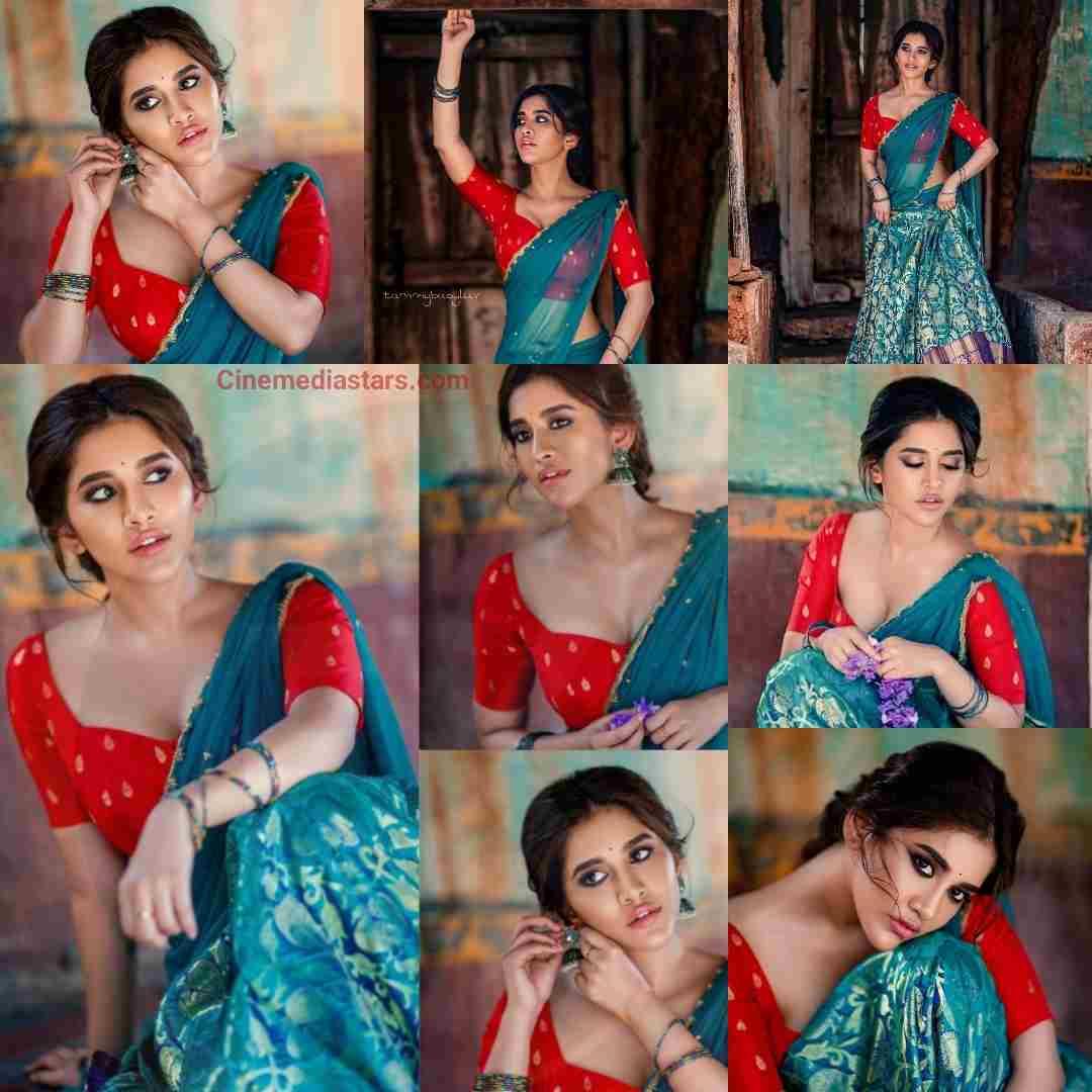 Actress Nabha Natesh half Saree